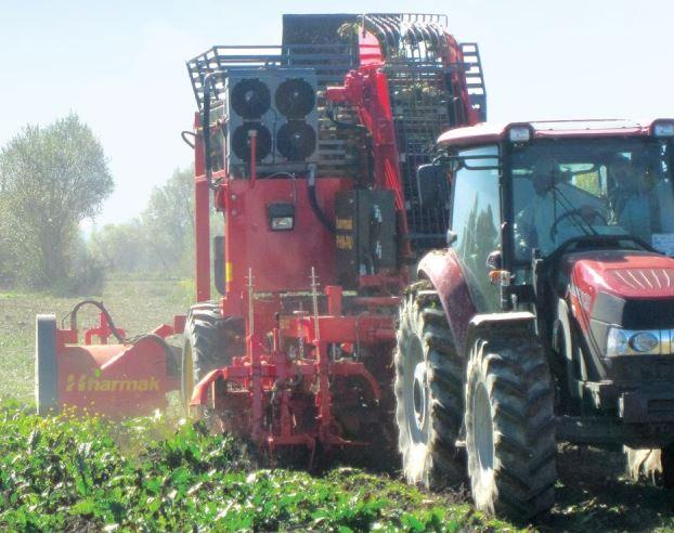 HARMAK PHM 3 / 2-reihig Rübenroder/double-row sugar beet harvester