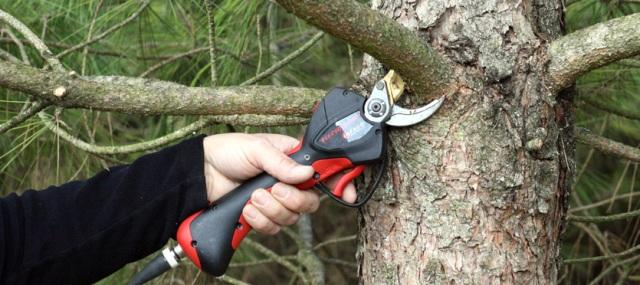 Infaco Electronic Secateurs/ Power Pruners